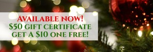 Available Now! Buy a 50 dollar gift certificate get a 10 dollar one free!